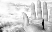 《轮回》之纪录片感悟:生命的思考