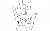 手相入门基础知识普及(1):认识三纹五线及其作用