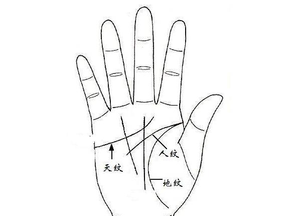 手相入门基础知识普及之:认识三纹五线及其作用1