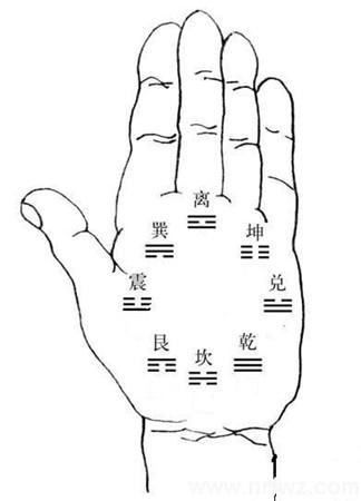 手相入门基础知识普及(3):手掌上的八卦九宫