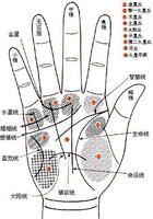 手相面相和指纹为何可以用来算命?